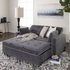 Jerome's Furniture offers the Carlton Queen Pullout Sleeper Sofa with 2 Pillows in Grey at the best prices possible with Same Day Delivery. Pull Out Sleeper Sofa, Queen Size Sleeper Sofa, Pull Out Couch, Best Sleeper Sofa, Sleeper Sofas, Jerome Furniture, Sofa Furniture, Coaster Furniture, Outdoor Furniture