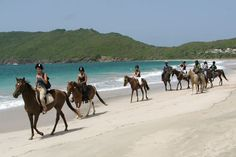 Horse riding on the beach in St Lucia - Top 10 things to do in St Thomas/John Southern Caribbean, Caribbean Cruise, Tahiti, Maldives, Santorini, Places To Travel, Places To See, Trekking, St Lucia Honeymoon