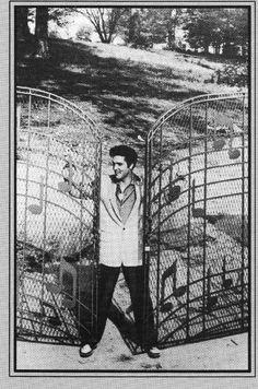 Elvis-postikortti 22