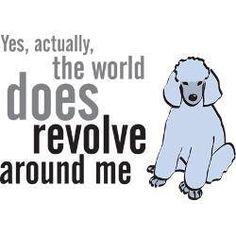 Revolves