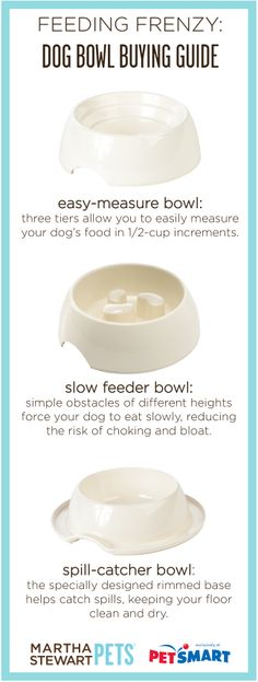 #MarthaStewartPets feeding solutions - a bowl for every type of eater! See the full assortment at #PetSmart.