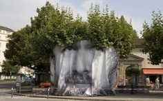 Tree  in Face  -  2012  (Mentalgassi)