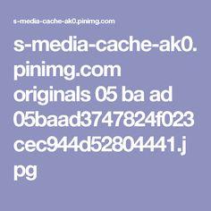 s-media-cache-ak0.pinimg.com originals 05 ba ad 05baad3747824f023cec944d52804441.jpg
