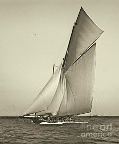 Yacht Shamrock Racing Americas Cup 1899