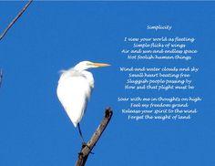 Egret Simplicity