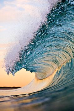 Photo: Warren Keelan
