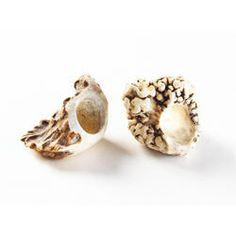 Kinda bulky looking. Antler Jewelry, Antler Ring, Metal Jewelry, Diy Jewelry, Shed Antlers, How To Make Rings, Bone Carving, Skull Art, Unique Rings