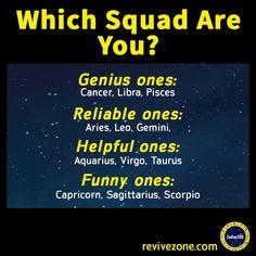 zodiac signs squad, aries, taurus, gemini, cancer, leo, virgo, libra, scorpio, sagittarius, capricorn, aquarius, pisces
