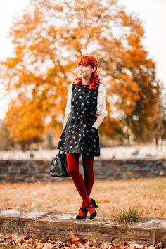 Autumn Visions