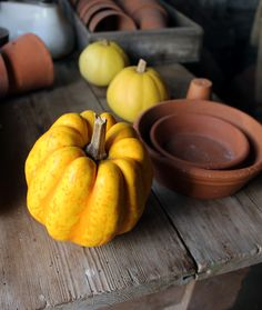 Happy Halloween! Dean, Happy Halloween, Pumpkin, Autumn, Vegetables, Food, Pumpkins, Fall Season, Essen