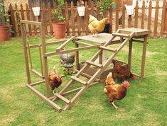 Activity Center for Chickens!! The Innovation Pet Chicken Activity Center is a fun and unique activity center to keep your chickens happy and healthy. Includes a ramp, perch, dust bin, treat ball and swing to keep your chickens active and entertained Use it for your free range flock or add it inside of your large walk in coop Up to 6 chickens can enjoy the activity center at the same time Easy assembly in approximately 30 minutes #petchickens