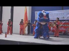 Dia mundial de Tai Chi - Bing video