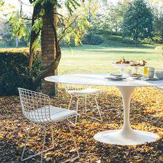 Side Chair Harry Bertoia dans jardin