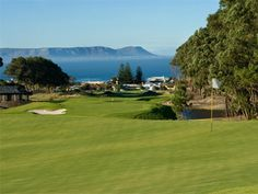 Hermanus Golf Club is perfectly set in the beautiful town of Hermanus in the Overberg merely 90 minutes from Cape Town. Set at the foot of the Klein River Mountains, the views over the bay are breath-taking. Famous Golf Courses, Public Golf Courses, St Andrews Golf, Coeur D Alene Resort, Augusta Golf, Golf Course Reviews, Grass Type, Golf Simulators, Golf Shop