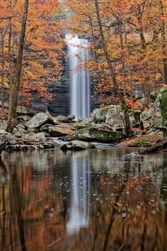 Cedar Falls, Petit Jean State Park in Arkansas Photographer: Photo by Tim Ernst. This fall never fails to take my breath. I've seen it in person a dozen or more times and never is it less beautiful. Oh The Places You'll Go, Places To Travel, Places To Visit, Chutes Victoria, Petit Jean State Park, Cedar Falls, Photos Voyages, Beautiful Waterfalls, Adventure Is Out There