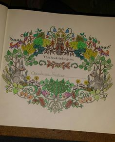 Start of my enchanted  forest book