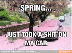 Spring is finally here. HORRAY.