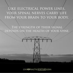 Spinal Nerve, Your Brain, Chiropractic, Strength, Health, Life, Health Care, Salud, Electric Power
