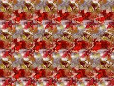 3D image - rose .... Right in the center.