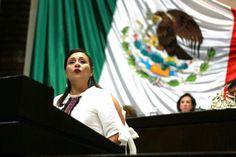 Sectores productivos del país deben participar en renegociación  del TLCAN: Karina Barón