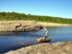 #Fliegenfischen: #Lachsangeln in #Kola in #Russland