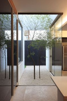 indoor/ outdoor space with trees planted in a rock garden.