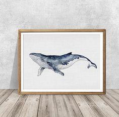 Whale Drawing, Whale Painting, Watercolor Whale, Watercolor Paintings, Watercolor Ideas, Watercolors, Whale Nursery, Nursery Art, Sea Nursery