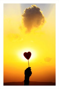 Power Of Love From : Stunning Conceptual Photography Ideas Nicolas Feuillatte, Brave, I Love Heart, Happy Heart, Conceptual Photography, Photography Ideas, Groundhog Day, Shades Of Yellow, Mellow Yellow