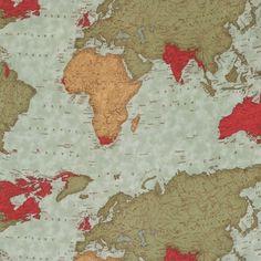 Tissu Passport Multi - World map x 31cm