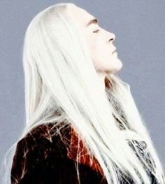 """I am the author of """"The Kingdom of the Woodland Realm Trilogy"""". I completed Book II: The Saga of Thranduil (two versions). Mirkwood Elves, Legolas And Thranduil, Elvish, Lee Pace, Jrr Tolkien, The Elf, Middle Earth, Lord Of The Rings, Lotr"""