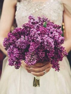 moh  could thorw sprigs of fresh bouquet cut lilacs just before the walk  from bouquet ilac bouquets | Lilac Bouquet hold in water ok another spring garden staple - remember?