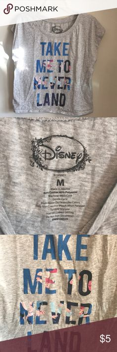 "Disney Peter pant crop top Sleeveless grey Peter Pan ""take me to neverland"" crop top. Worn twice. All clothes will be washed before shipment. Offers welcome Disney Tops Crop Tops"
