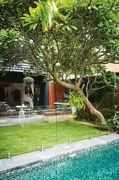 This compact Sydney garden is inspired by Bali Inspired by a family trip to Bali, this compact garden includes kid-friendly zones and plenty of space for entertaining. Swimming Pools Backyard, Small Backyard Landscaping, Backyard Fences, Landscaping Tips, Backyard Ideas, Garden Ideas, Patio Fence, Garden Fences, Brick Fence