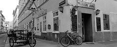 Gagarin Lokal, Vienna, Culture
