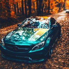 #mercedes #amg #sports #fall #forest #cars Lamborghini, Ferrari, Bmw E39, Stance Nation, Mercedes Amg, Jdm, Nissan, Mustang, Volkswagen