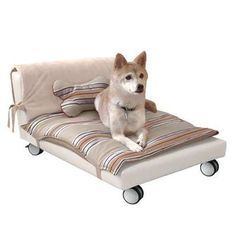 check out this awesome designer bed for your dog now your loving companion can have his or her own dog plaform bed the rollerbed is a designer dog bed