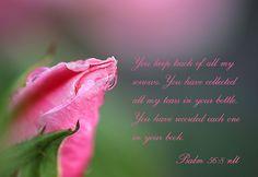 Psalm 56:8  - Rose Scripture