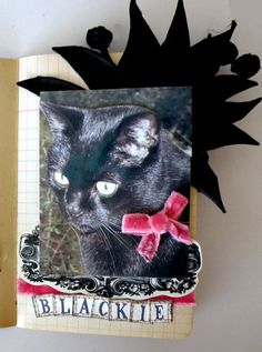 A Teacup of Scrapisms: Cat Lovers Hop Last One! HAPPY HALLOWEEN!
