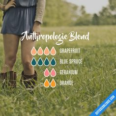 Anthropologie Blend - Essential Oil Diffuser Blend