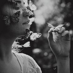 Butterfly, butterfly... catpriestess