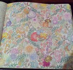 Millie Marotta Animal Kingdom Done In Pencils
