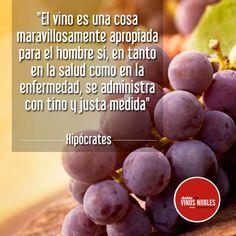 Comienza esta semana compartiendo una deliciosa copa de vino! #VinosNobles www.vinosnobles.com Imagen vía #Pinterest