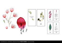 Introducing Julia Perrin/ illustrator : #juliaperrin #illustrator #erichennebertagency #beautyartist #artdirector