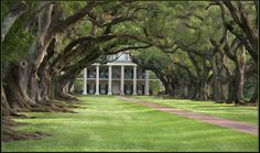 Photographic art:  Oak Alley in Vacherie, Louisiana, United States from April : Pashadelic