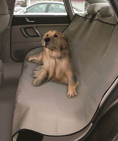 Take a look at this Beige Waterproof Pet Car Seat Cover by Etna Products on #zulily today! $14 !!