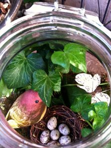 Nature Garden, Sister Bloom Themed Terrariums, a division of Made-that designs