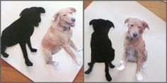 Make a silhouette of your dog