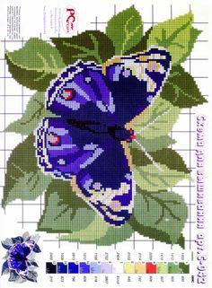 Cross stitch butterfly and chart. Cross Stitch Cards, Cross Stitch Animals, Cross Stitching, Cross Stitch Embroidery, Hand Embroidery, Embroidery Ideas, Butterfly Cross Stitch, Cross Stitch Flowers, Modern Cross Stitch Patterns