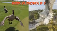 Top 5 Angry Birds vs Drones # 2