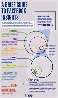 Guia de Brief para Facebook Insights!